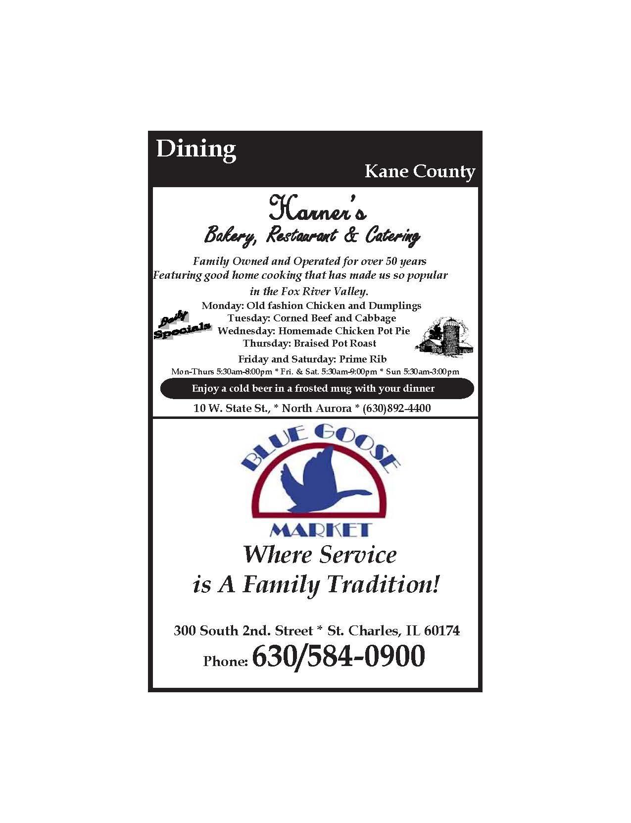 Kane County SG_Page_3.jpg