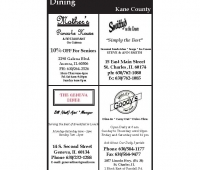 Kane County SG_Page_5.jpg