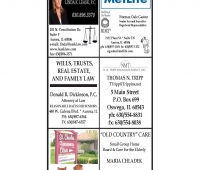 Kane County SG_Page_7.jpg